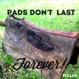 saddle pads and padding