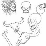 Free Skull Pack
