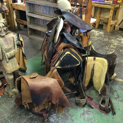 saddle repair Archives - Don Gonzales Saddlery